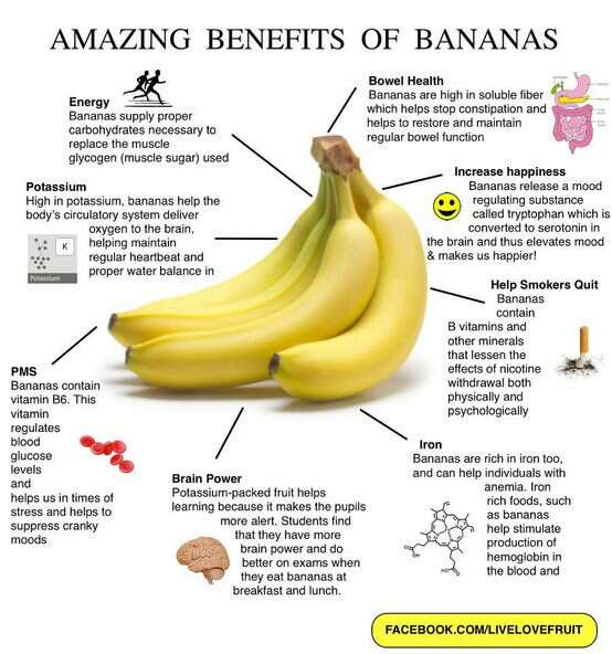 Banana Health Benefits Infographic; Make a delicious Avocado Banana Smoothie!