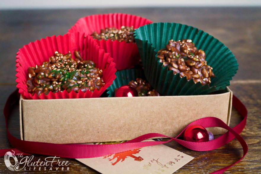 Easy Gluten-Free Chocolate No-Bake Christmas Nibbles - A holiday winner! #glutenfree #chocolate #christmas  #fodmapdiet